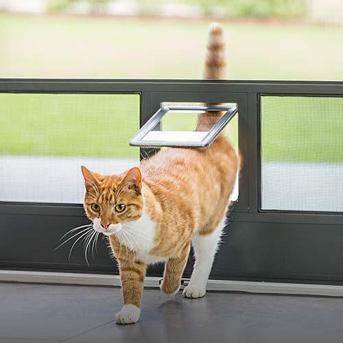 Katzenklappe von Näher Insektenschutz